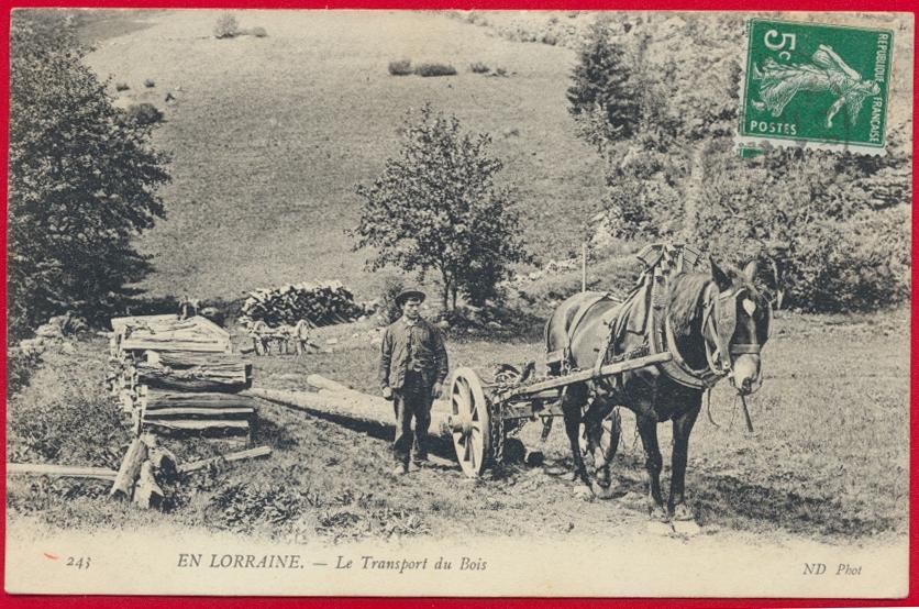 CPA en lorraine le transport du bois attelage vosges
