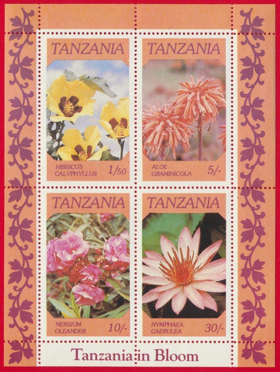 bloc-tanzanie-tanzania-bloom