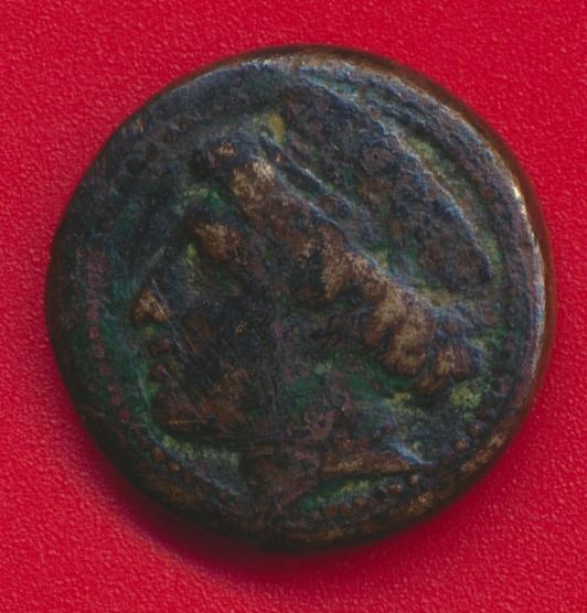 grece-antique-thrace-aegospotami-chevre-goat-vs