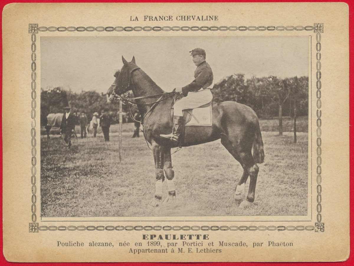 carte-photo-france-chevaline-epaulette-pouliche-lethiers