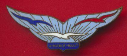 insigne-armee-air-institution-jeunes-filles-noble-haut