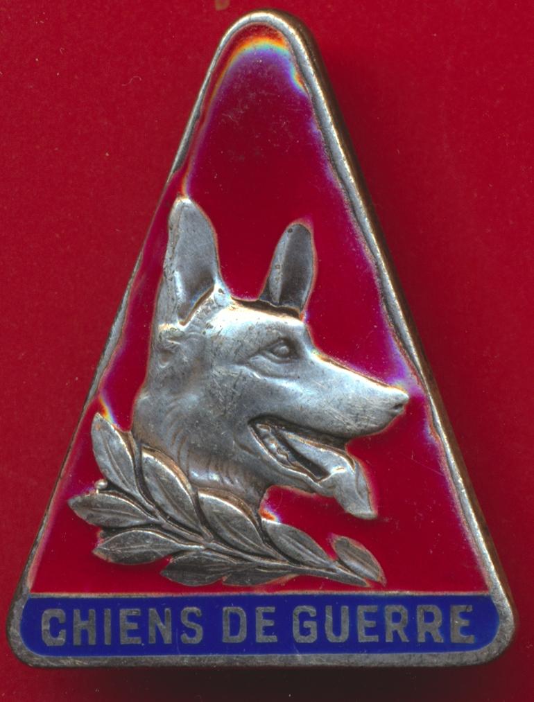 insigne-maitre-chien-guerre