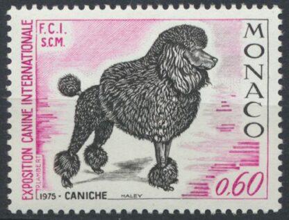 monaco-caniche
