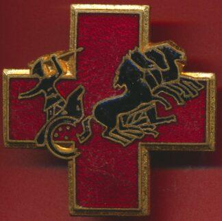 insigne-service-sante-4-region-militaire